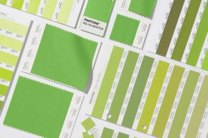 3066350-slide-4-pantone-announces-the-2017-color-of-the-year-greenery